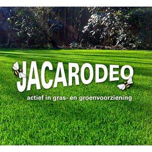Jacarodeo logo