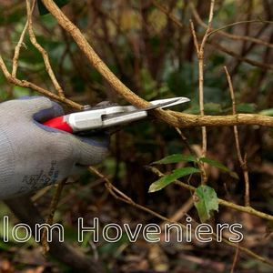 Frank Blom Hoveniers image 7