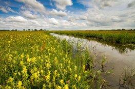 Landschap Noord-Holland zet in op 1 miljoen m2 extra natuur